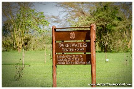 Serena Sweetwaters