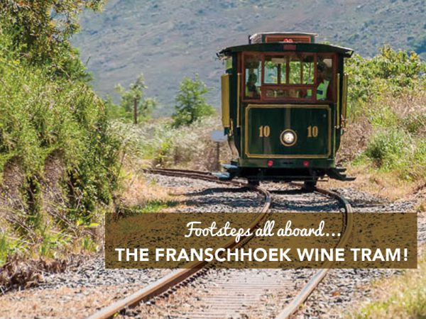FOOTSTEPS ALL ABOARD…THE FRANSCHHOEK WINE TRAM!