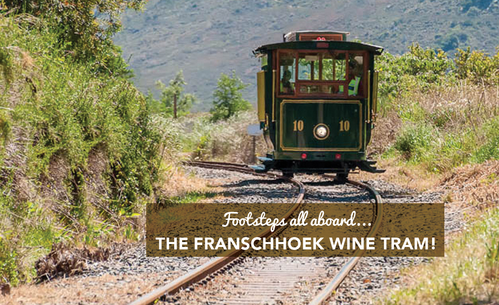 FOOTSTEPS ALL ABOARD…THE FRANSCHHOEK WINE TRAM!