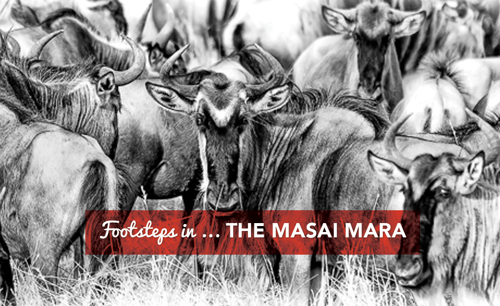 Footsteps in…The Masai Mara