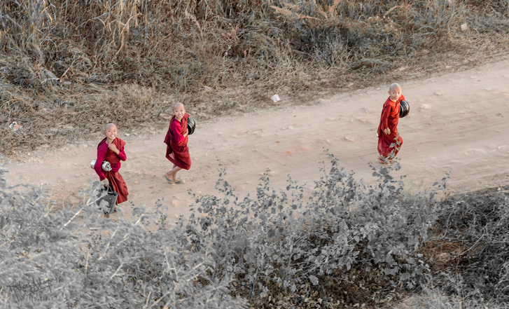 Novice monks get about their day in the plains of Bagan