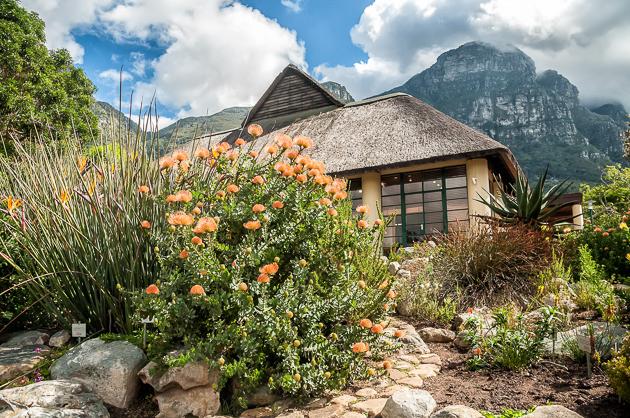 Pretty cottage in Kirstenbosch Gardens