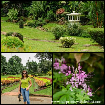 Stunning Gardens....