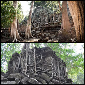 footsteps-in-siem-reap-temple-hopping-3