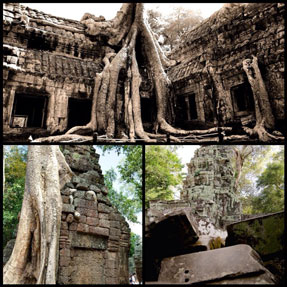 footsteps-in-siem-reap-the-land-of-angkor-wat-6