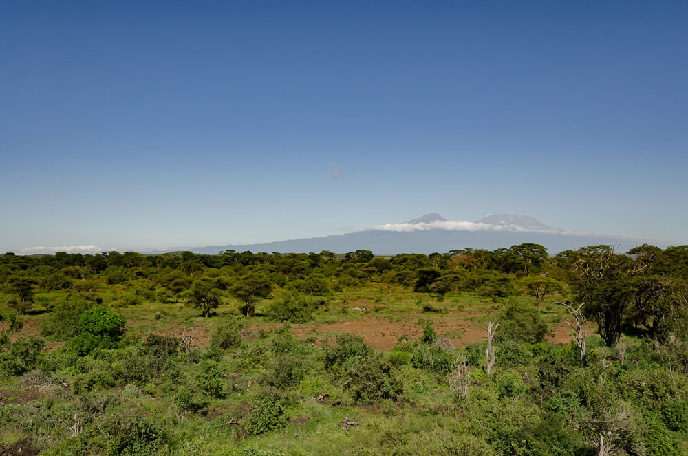Majestic Kilimanjaro from the observation deck