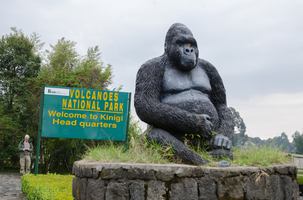 Welcome to Volcanoes National Park!