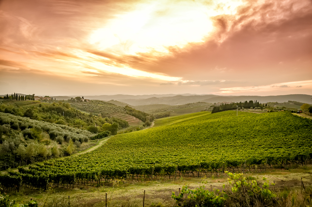 Simply GORGEOUS, breathtaking Tuscany