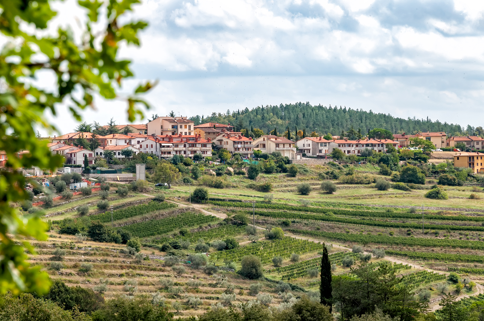 Castellina in Chianti from a distance