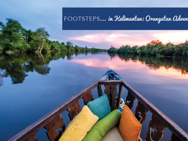 Footsteps in…Kalimantan: Orangutan Adventures!