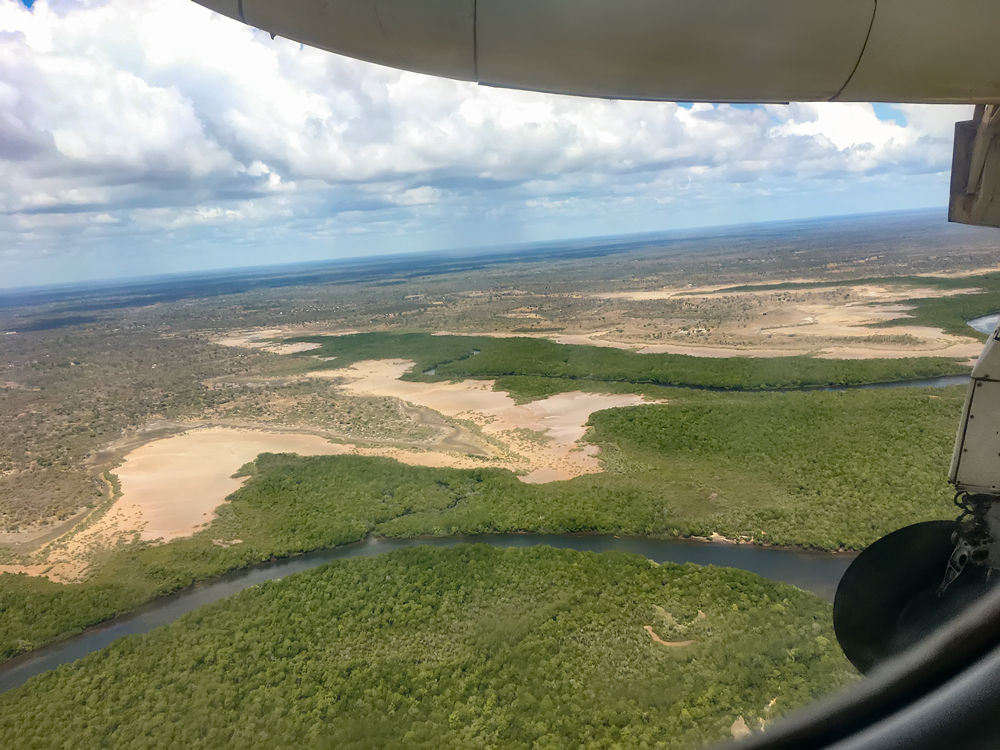 Mangrove swamps on landing in Manda
