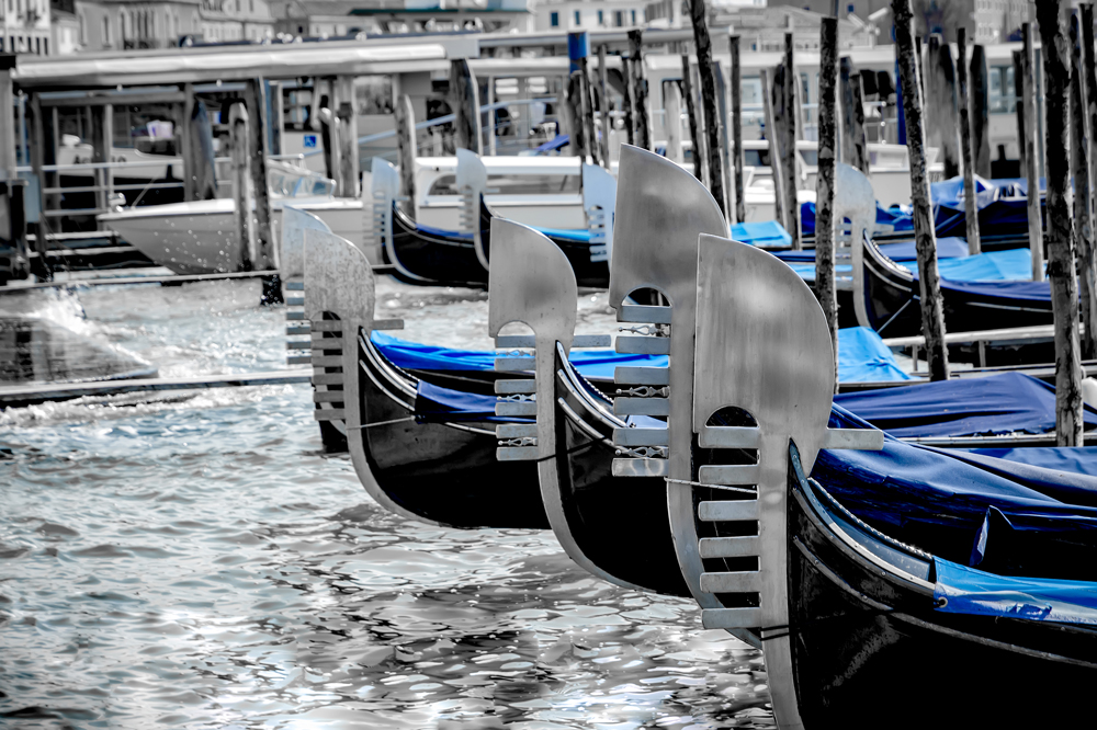 The prongs of the Gondolas, bobbing on the Grand Canal