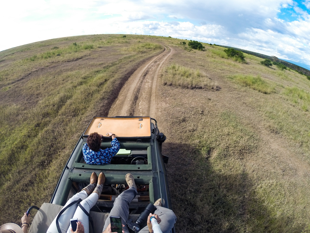 Game drives atop the Land Cruiser