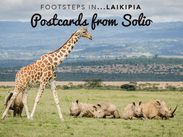 Footsteps in Laikipia....Postcards from Solio