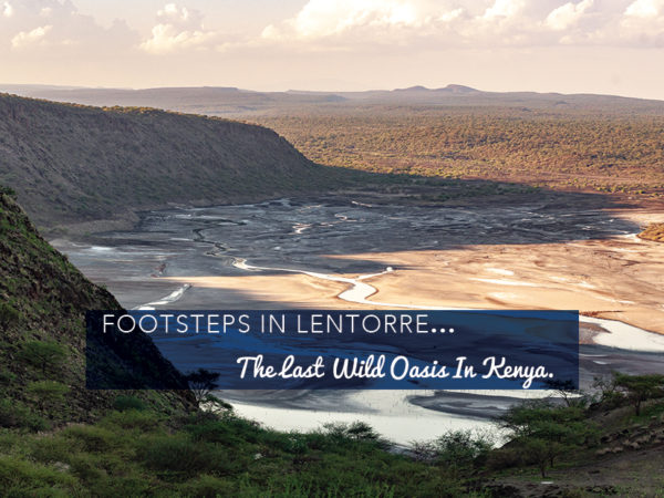 Footsteps in Lentorre…The Last Wild Oasis in Kenya